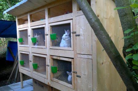 králíkárna 6 kotců