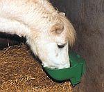 Napáječky pro koně