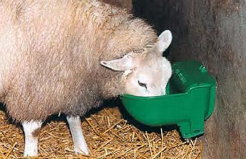 Napáječky pro ovce c9619ad20f4