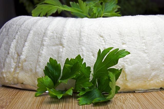 recept na čerstvý sýr ze syřidla Stremsel Lactoferm