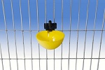 Napáječka automatická pro ptactvo a malá zvířata závěsná