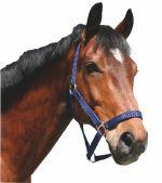 Ohlávka pro koně nylonová s bandáží barva modrá