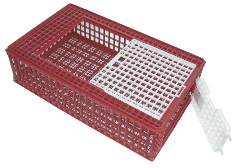 Transportní box na drůbež