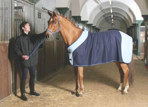 Fleecová deka pro koně na přepravu a odpocování