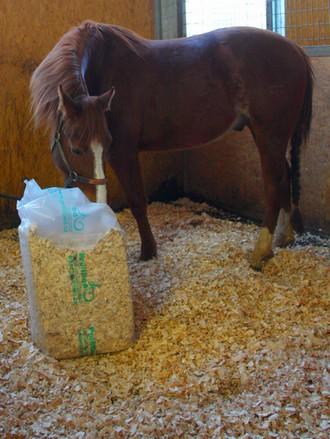 Podestýlka pro koně